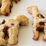 Cranberry scones zoo recipe