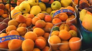 apricot apple puree 8