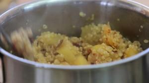 quinoa puree10