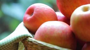 apple tart7