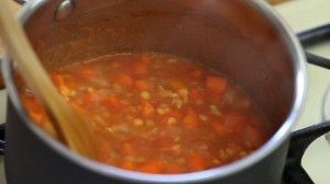 red lentils puree13
