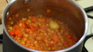 red lentils puree14