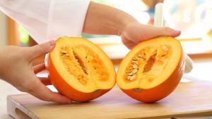 pumpkin puree6