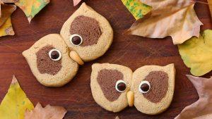biscotti gufo2