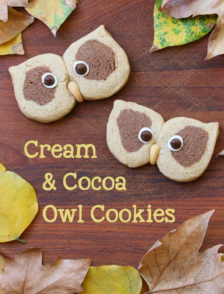 owl cookies long