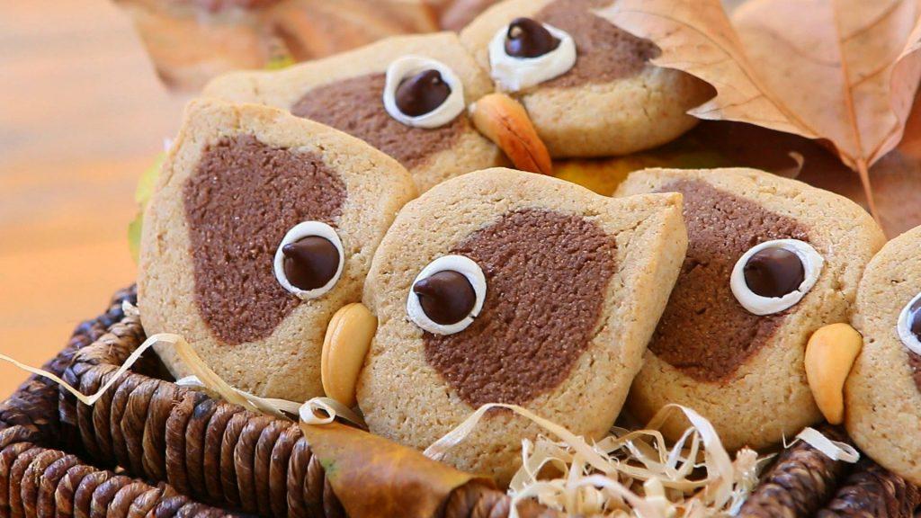 owl cookies28