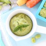 Fava Bean & Kale Baby Food Puree +8M
