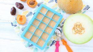Melon Apricot Dates baby puree' +6M
