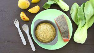 Salmon Bok Choy Plum Baby Puree +6M