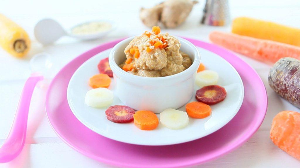 Chicken Carrot Ginger Baby Puree 6m Myspecialfood